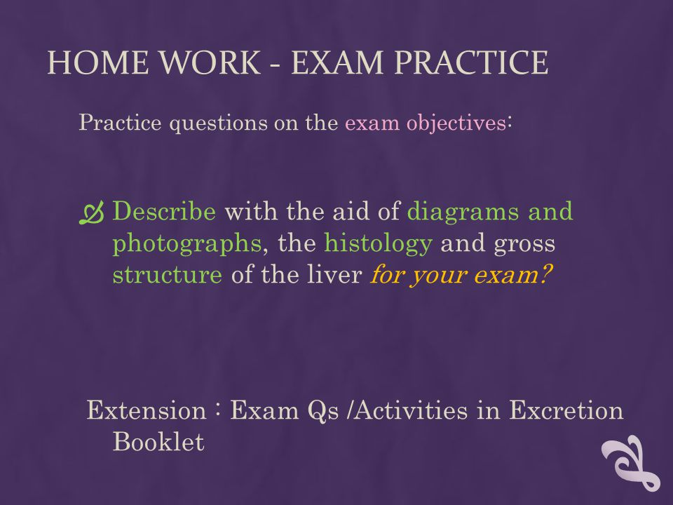 HOME WORK - EXAM PRACTICE Practice questions on the exam objectives:  Describe with the aid of diagrams and photographs, the histology and gross stru