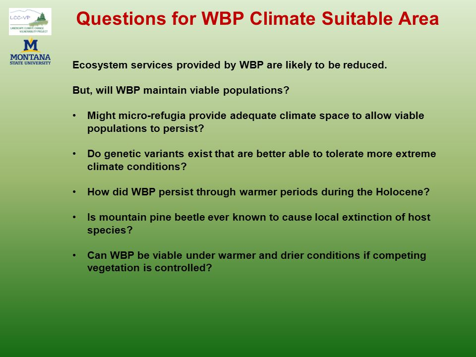 Questions for WBP Climate Suitable Area Ecosystem services provided by WBP are likely to be reduced. But, will WBP maintain viable populations? Might