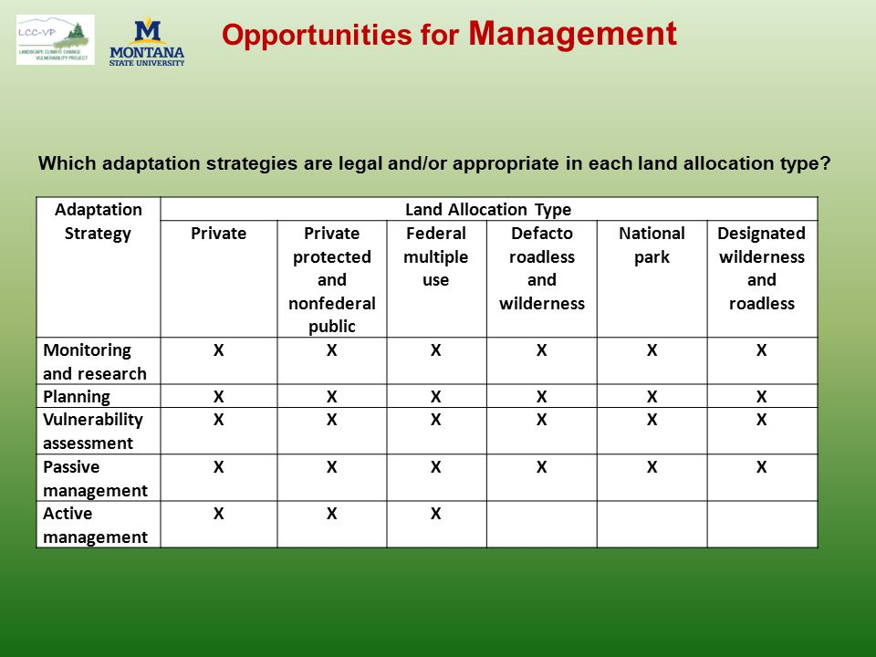 Opportunities for Management Adaptation Strategy Land Allocation Type PrivatePrivate protected and nonfederal public Federal multiple use Defacto road