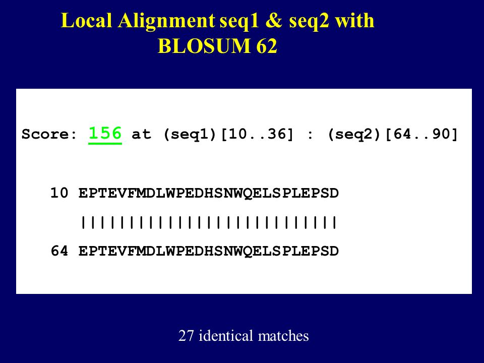 Local Alignment seq1 & seq2 with BLOSUM 62 Score: 156 at (seq1)[10..36] : (seq2)[64..90] 10 EPTEVFMDLWPEDHSNWQELSPLEPSD ||||||||||||||||||||||||||| 64 EPTEVFMDLWPEDHSNWQELSPLEPSD 27 identical matches