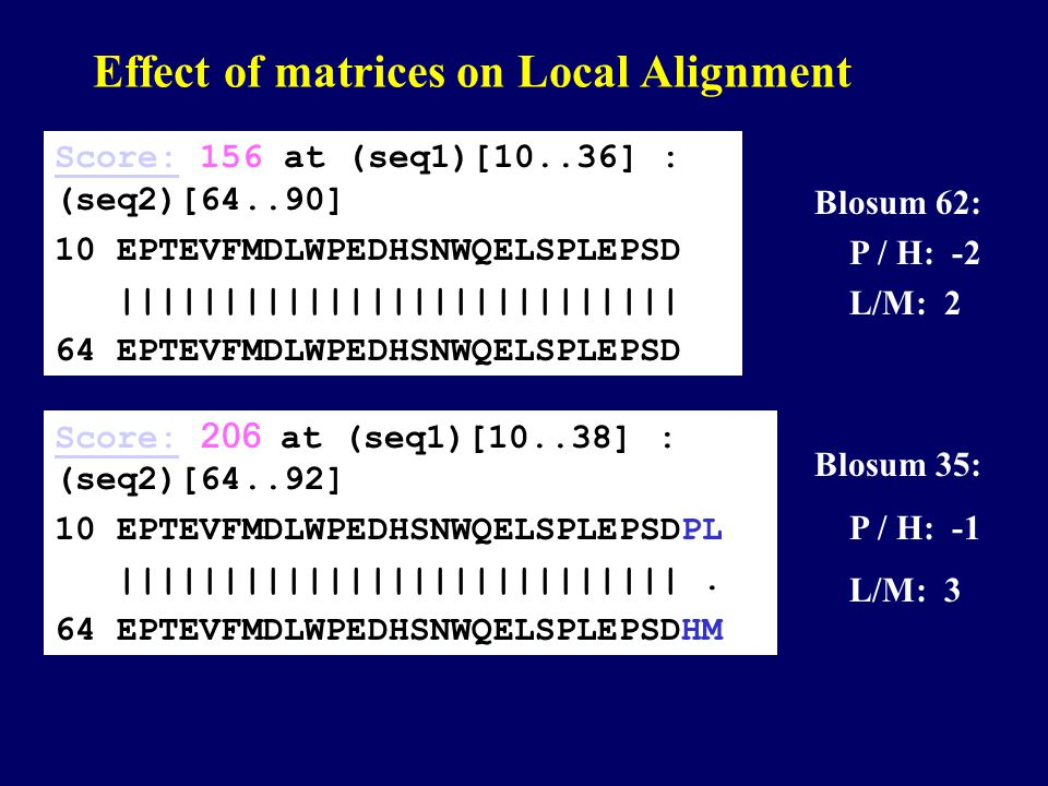 Effect of matrices on Local Alignment Score:Score: 206 at (seq1)[10..38] : (seq2)[64..92] 10 EPTEVFMDLWPEDHSNWQELSPLEPSDPL |||||||||||||||||||||||||||.