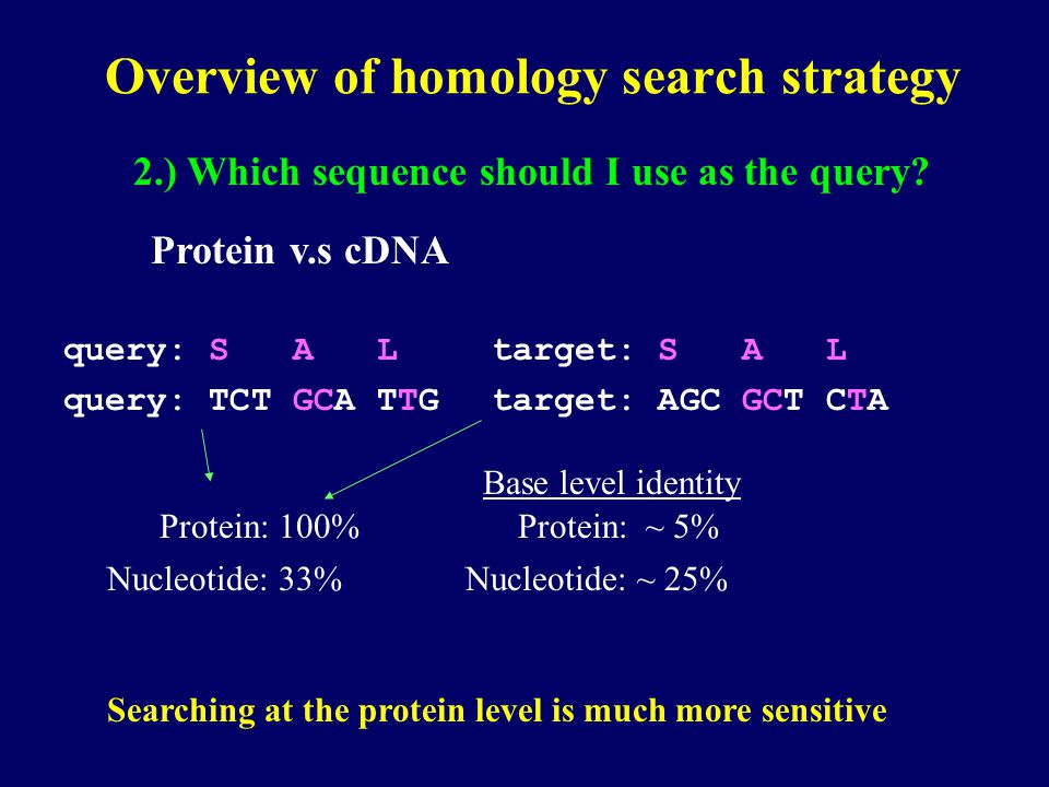 Overview of homology search strategy 2.) Which sequence should I use as the query? Protein v.s cDNA Searching at the protein level is much more sensit