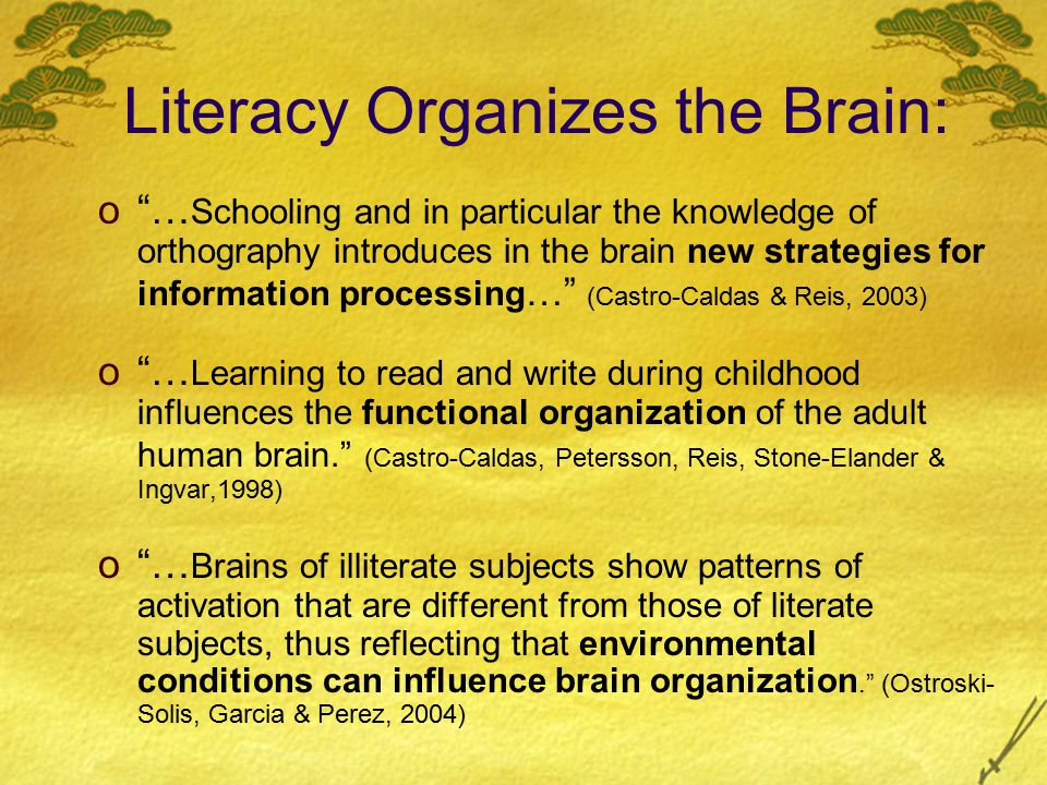 In Other Words… According to researchers, the brain learns not only the elements of the written system… but it also learns to organize incoming information according to the writing system being learned: For example, readers of English learn to scan visual fields from upper left corner; readers of Arabic scan visual fields from upper right.