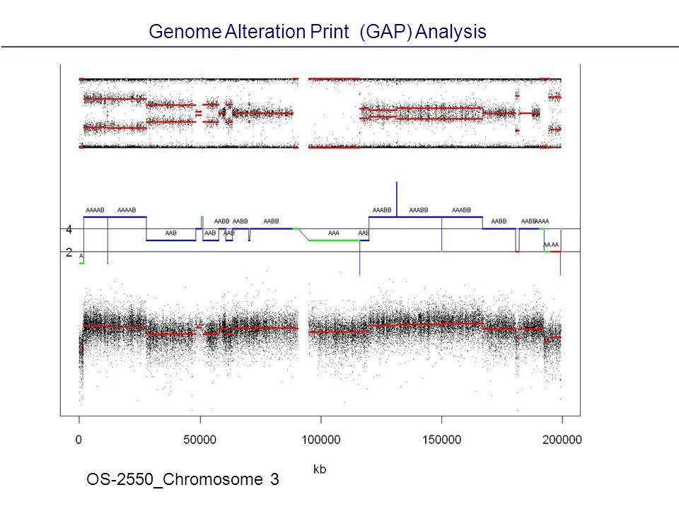 OS-2550_Chromosome 3 Genome Alteration Print (GAP) Analysis