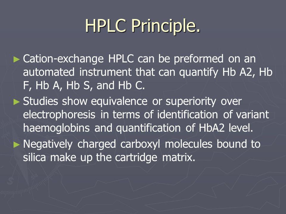 HPLC Principle.