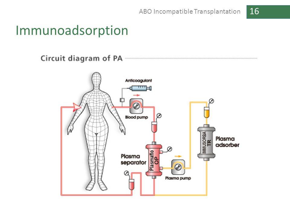 16 ABO Incompatible Transplantation Immunoadsorption