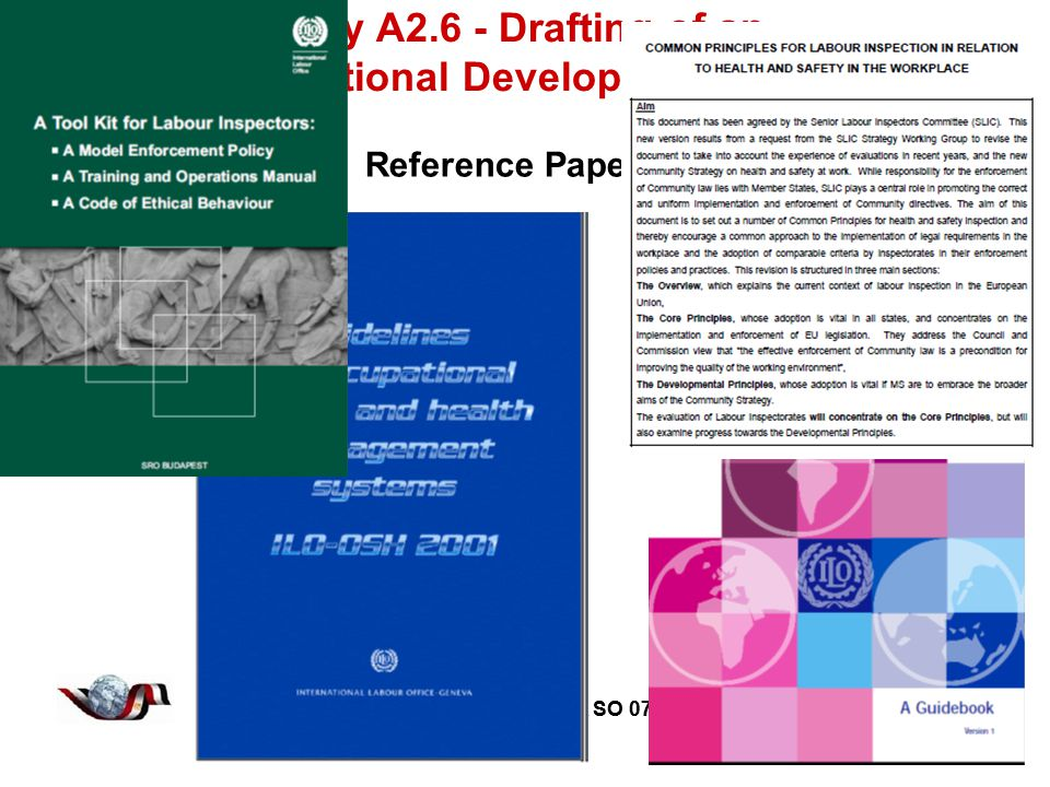 Twinning Project EG 07 AA SO 07 16 Twinning Project EG 07 AA SO 07 Activity A2.6 - Drafting of an Organizational Development Plan Reference Papers