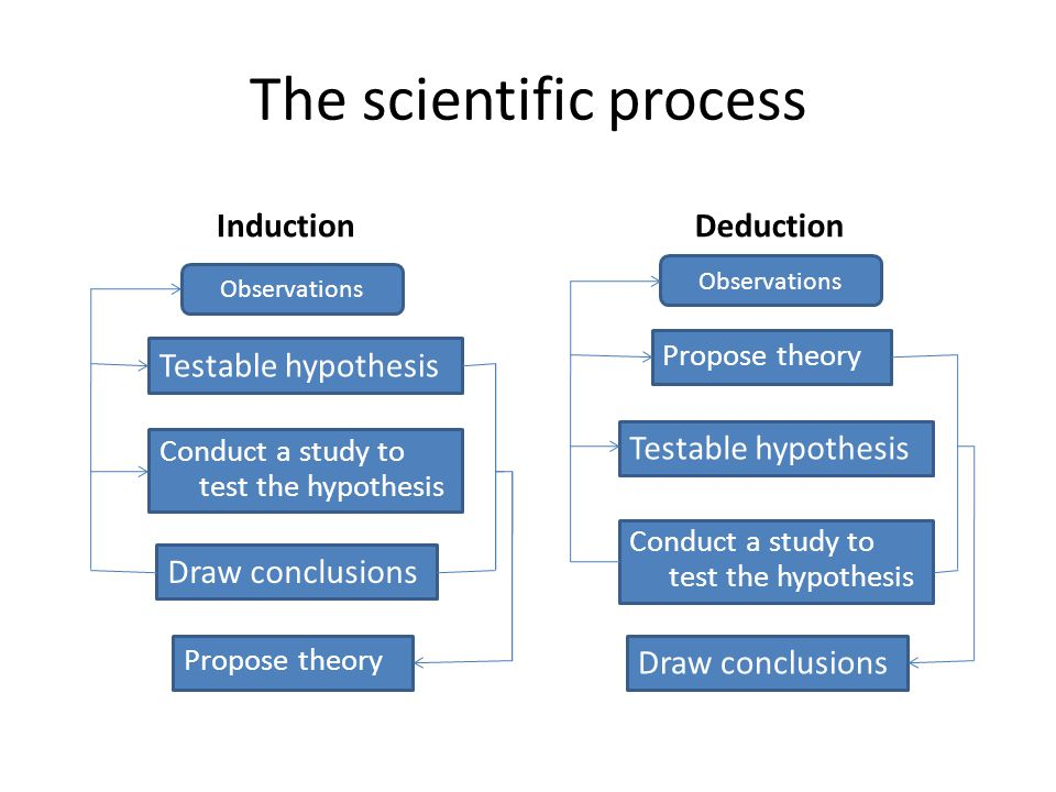 The scientific process Induction Testable hypothesis Deduction Observations Testable hypothesis Conduct a study to test the hypothesis Draw conclusion