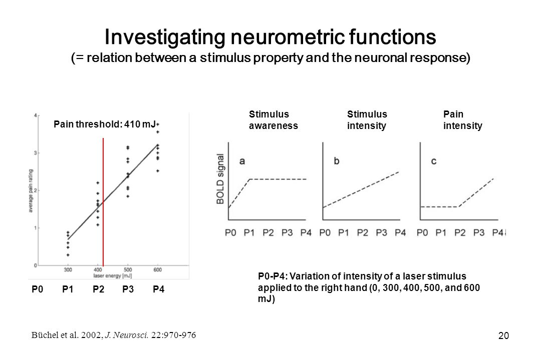 Investigating neurometric functions (= relation between a stimulus property and the neuronal response) Stimulus awareness Stimulus intensity Pain intensity Pain threshold: 410 mJ P1 P2 P3 P4 P0-P4: Variation of intensity of a laser stimulus applied to the right hand (0, 300, 400, 500, and 600 mJ) Büchel et al.