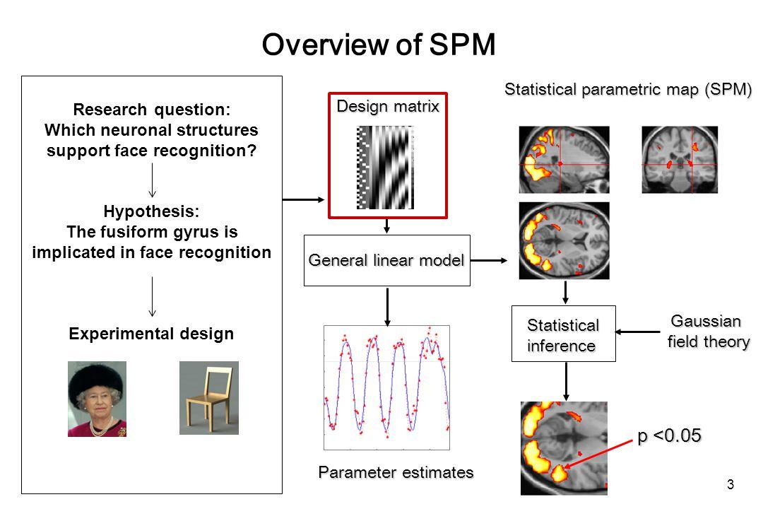 PPI: interpretation Two possible interpretations of the PPI term: V1 Modulation of V1  V5 by attention Modulation of the impact of attention on V5 by V1.