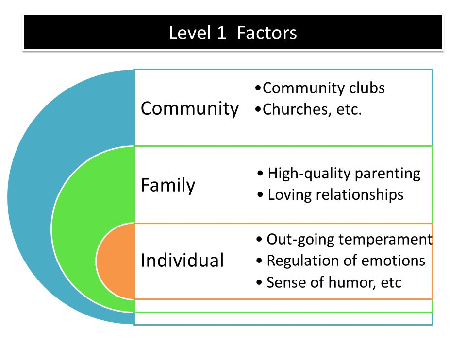 Level 1 Factors Community Family Individual Community clubs Churches, etc. High-quality parenting Loving relationships Out-going temperament Regulatio