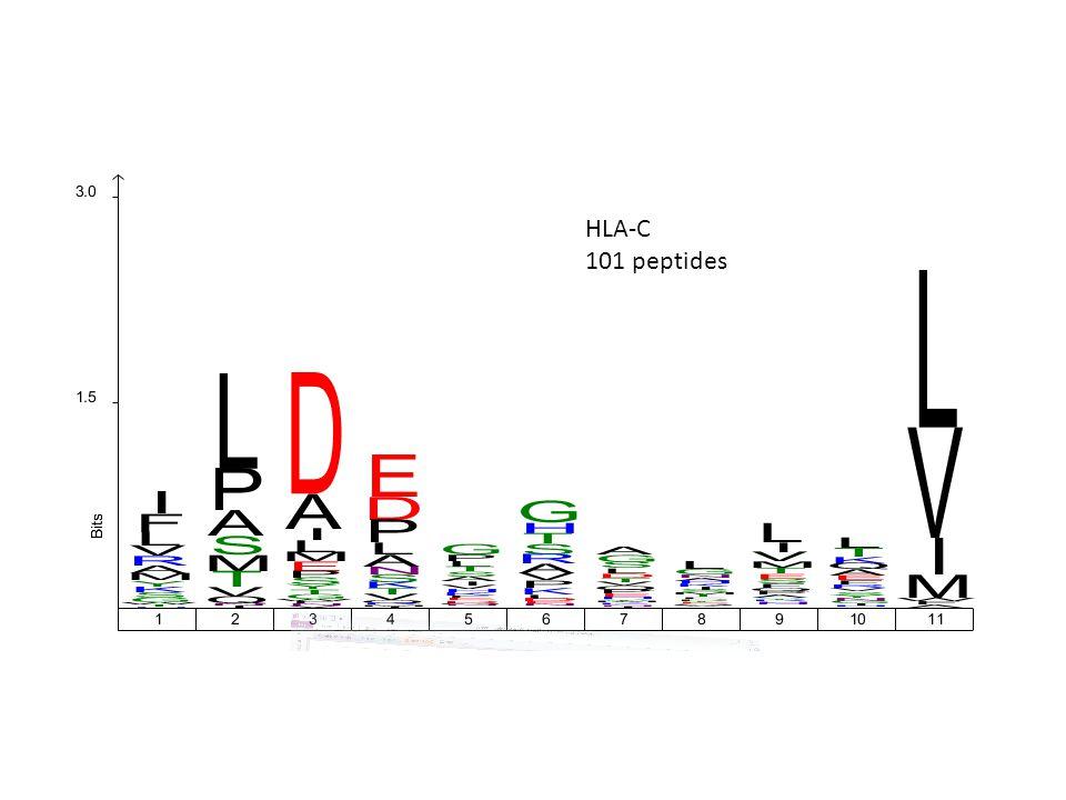 HLA-C 101 peptides