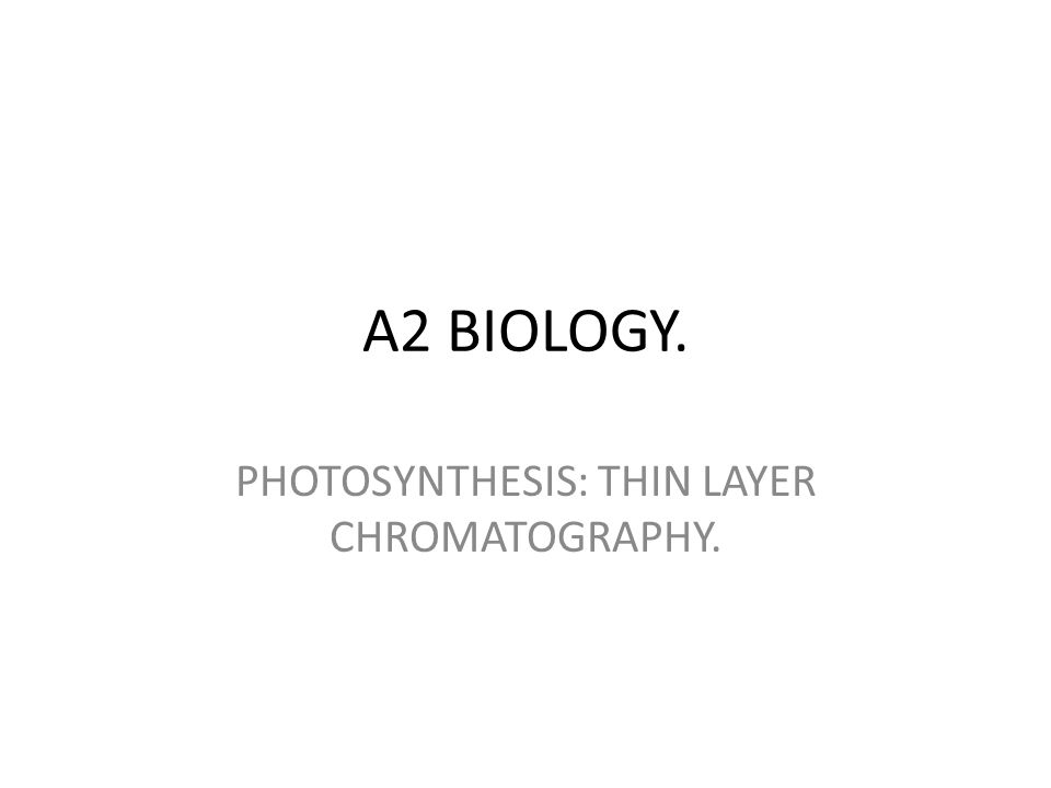 A2 BIOLOGY. PHOTOSYNTHESIS: THIN LAYER CHROMATOGRAPHY.