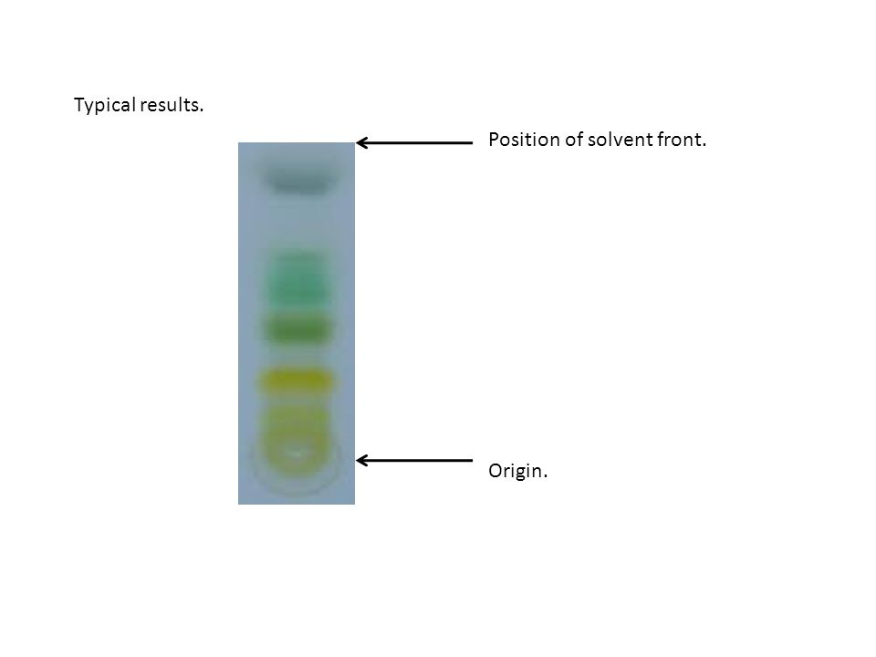 Position of solvent front. Origin.
