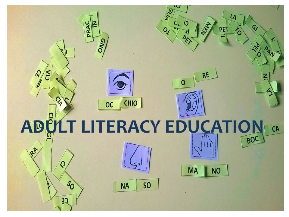 ADULT LITERACY EDUCATION