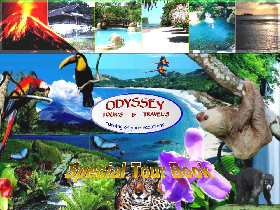 It s a pleasure service you.Odyssey Tours Costa Rica No artificial ingredients.