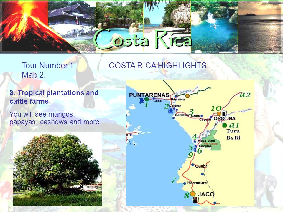 Tour Number 1.COSTA RICA HIGHLIGHTS Map 2. 4. Possible Stop Crocodiles river bridge.
