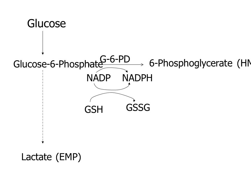 Glucose Glucose-6-Phosphate G-6-PD 6-Phosphoglycerate (HMS) NADPNADPH GSH GSSG Lactate (EMP)