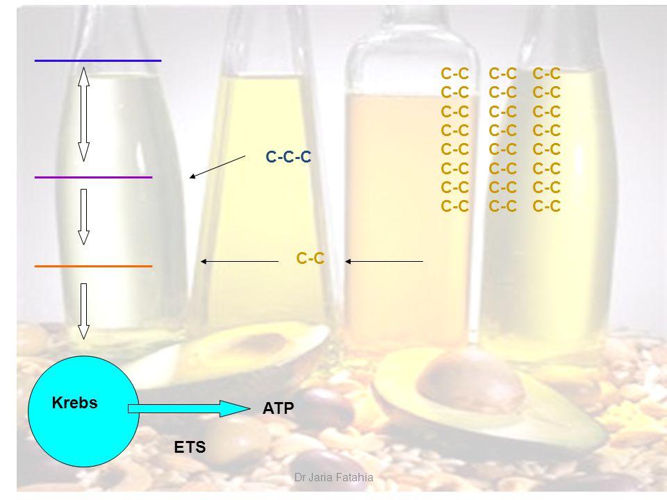 ______________ _____________ Krebs ETS ATP C-C-C C-C C-C C-C C-C
