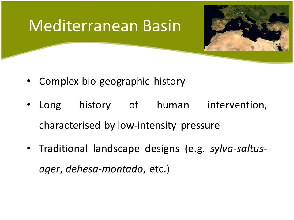 Mediterranean Basin Complex bio-geographic history Long history of human intervention, characterised by low-intensity pressure Traditional landscape designs (e.g.