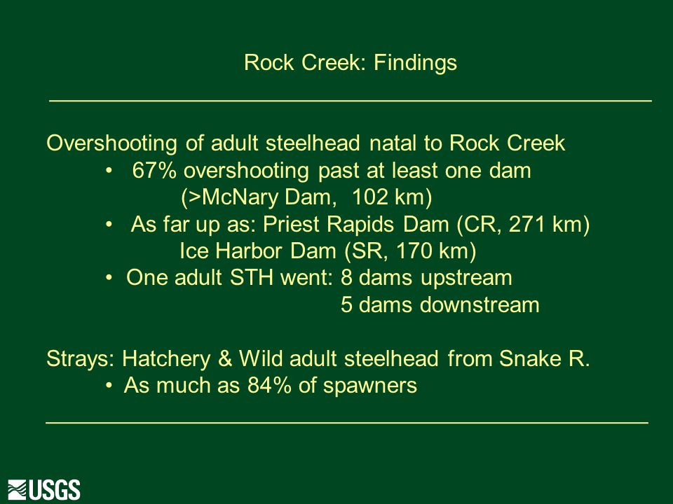 Rock Creek: Findings ________________________________________________ Overshooting of adult steelhead natal to Rock Creek 67% overshooting past at least one dam (>McNary Dam, 102 km) As far up as: Priest Rapids Dam (CR, 271 km) Ice Harbor Dam (SR, 170 km) One adult STH went: 8 dams upstream 5 dams downstream Strays: Hatchery & Wild adult steelhead from Snake R.
