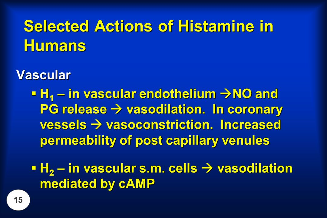 15 Selected Actions of Histamine in Humans Vascular  H 1 – in vascular endothelium  NO and PG release  vasodilation. In coronary vessels  vasocons