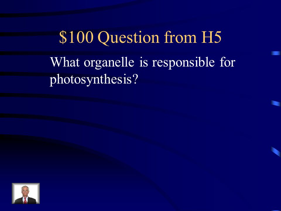 $100 Question from H5 What organelle is responsible for photosynthesis?