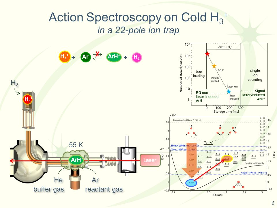 Action Spectroscopy on Cold H 3 + in a 22-pole ion trap 55 K Laser H3+H3+ H3+H3+ H3+H3+ He Ar ArH + H3+H3+ H2H2 ++ Ar H3+H3+ H3+H3+ H3+H3+ ArH + H2H2 H2H2 buffer gas reactant gas BG non laser-induced ArH + Signal laser-induced ArH + 6