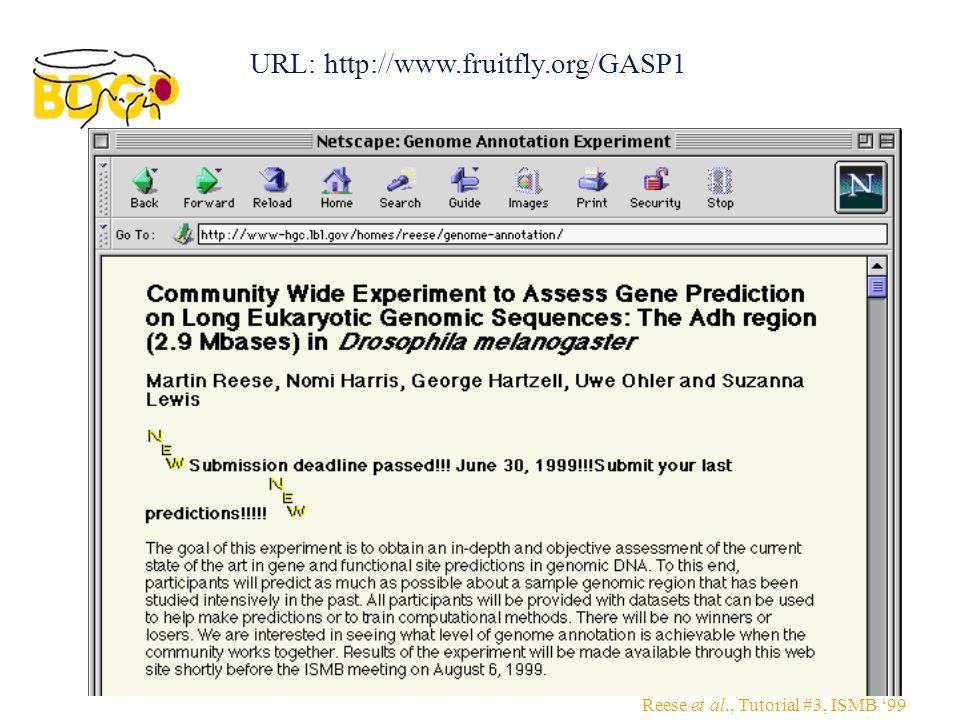 Reese et al., Tutorial #3, ISMB '99 URL: http://www.fruitfly.org/GASP1