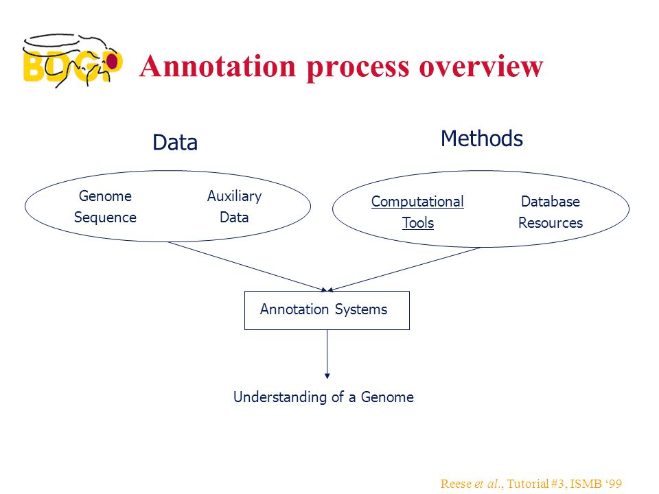 Reese et al., Tutorial #3, ISMB '99 Annotation process overview Genome Sequence Auxiliary Data Computational Tools Understanding of a Genome Annotation Systems Data Methods Database Resources