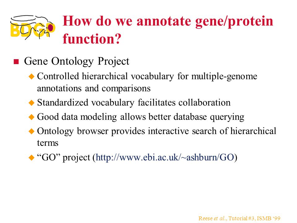 How do we annotate gene/protein function.
