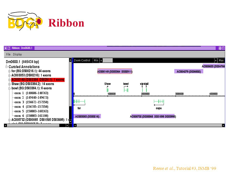 Reese et al., Tutorial #3, ISMB '99 Ribbon