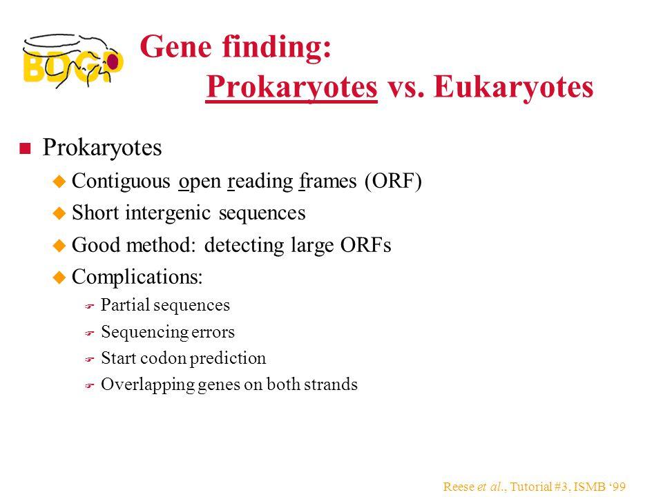 Reese et al., Tutorial #3, ISMB '99 Gene finding: Prokaryotes vs. Eukaryotes Prokaryotes  Contiguous open reading frames (ORF)  Short intergenic seq