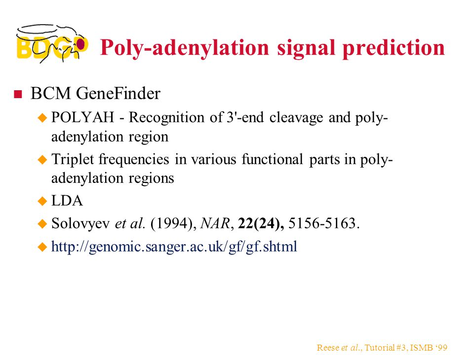 Reese et al., Tutorial #3, ISMB '99 Poly-adenylation signal prediction BCM GeneFinder  POLYAH - Recognition of 3 -end cleavage and poly- adenylation region  Triplet frequencies in various functional parts in poly- adenylation regions  LDA  Solovyev et al.