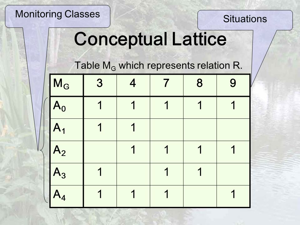 Conceptual Lattice MGMG 34789 A0A0 11111 A1A1 11 A2A2 1111 A3A3 111 A4A4 1111 Table M G which represents relation R.