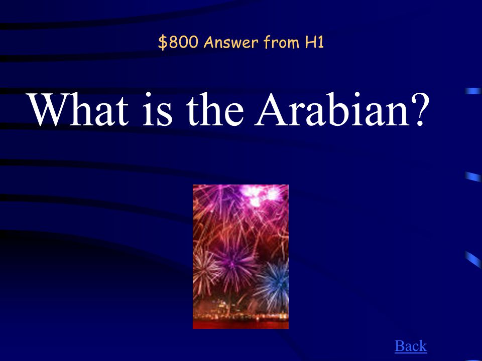 $800 Question from H1 The desert that makes up much of the Middle East.