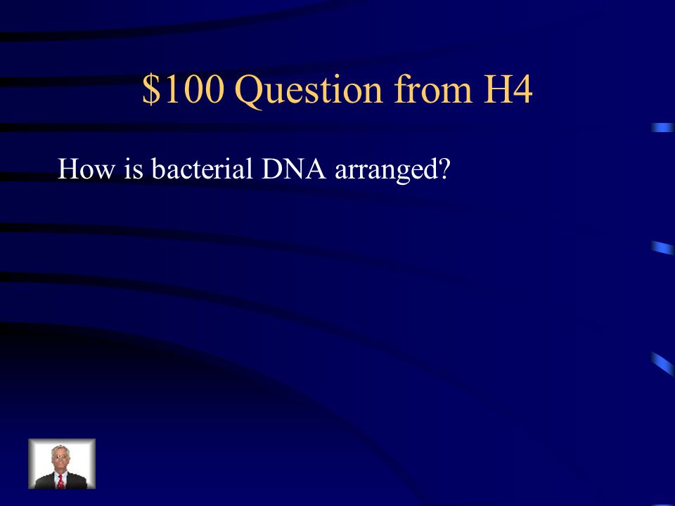 $500 Answer from H3 Floating or suspended in the cytoplasm, Usually near the center of the cell