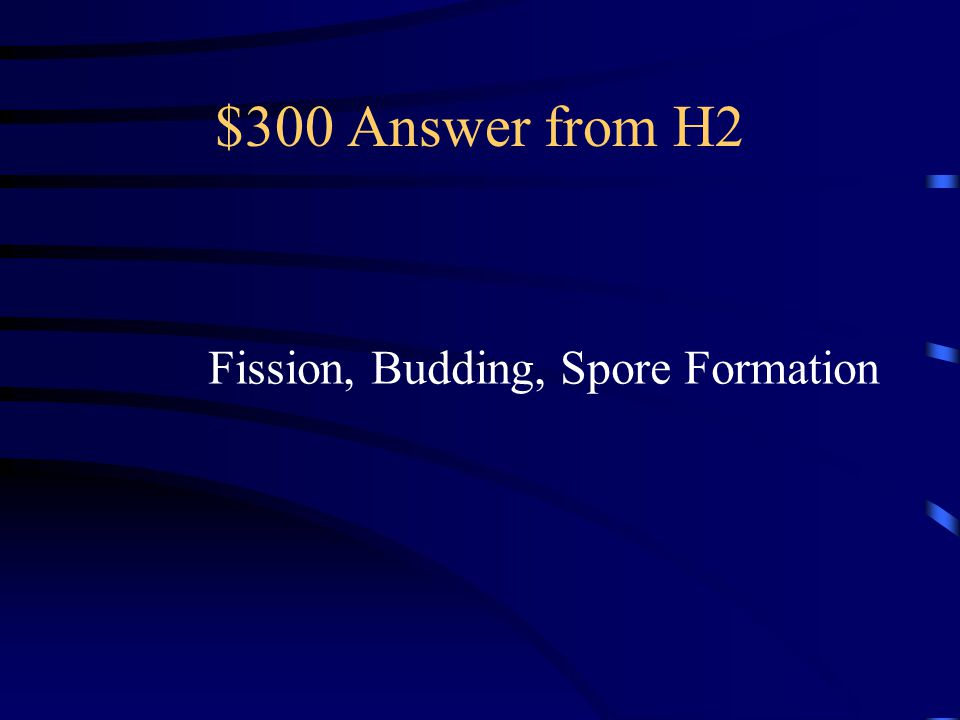 $300 Question from H2 List 3 Different Types of Asexual Reproduction