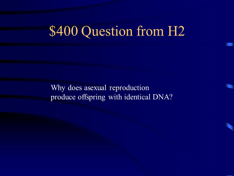 $300 Answer from H2 Fission, Budding, Spore Formation