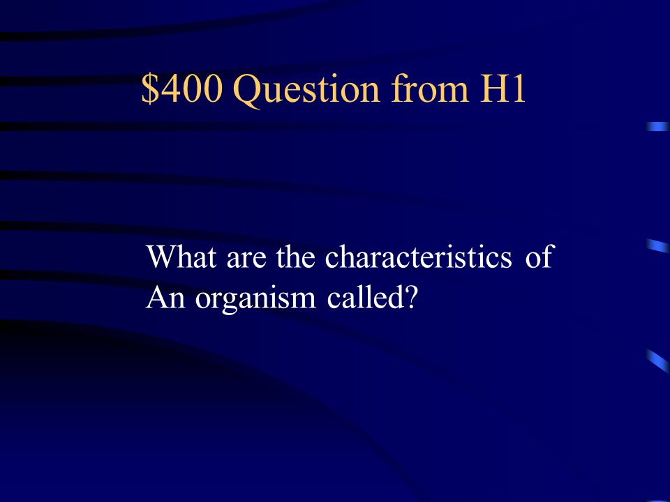 $300 Answer from H1 Practice (learned trait)