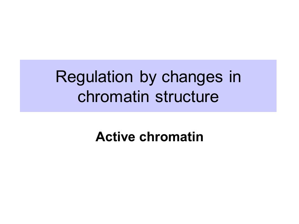 Regulation by changes in chromatin structure Active chromatin
