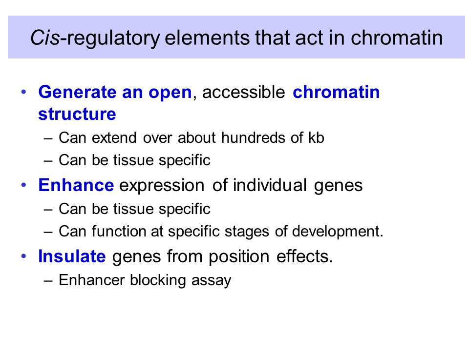 Cis-regulatory elements that act in chromatin Generate an open, accessible chromatin structure –Can extend over about hundreds of kb –Can be tissue specific Enhance expression of individual genes –Can be tissue specific –Can function at specific stages of development.