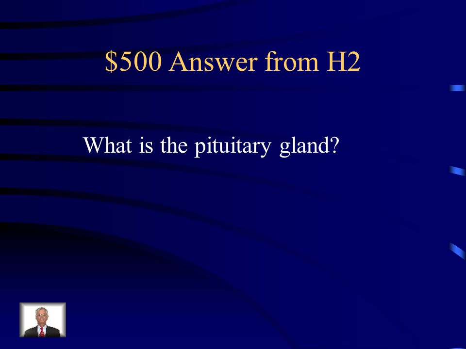 $500 Question from H2 Triggers the start of puberty.