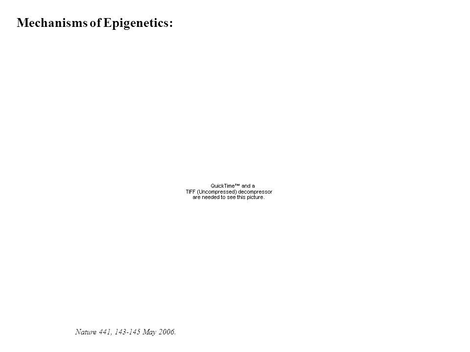 Nature 441, 143-145 May 2006. Mechanisms of Epigenetics: