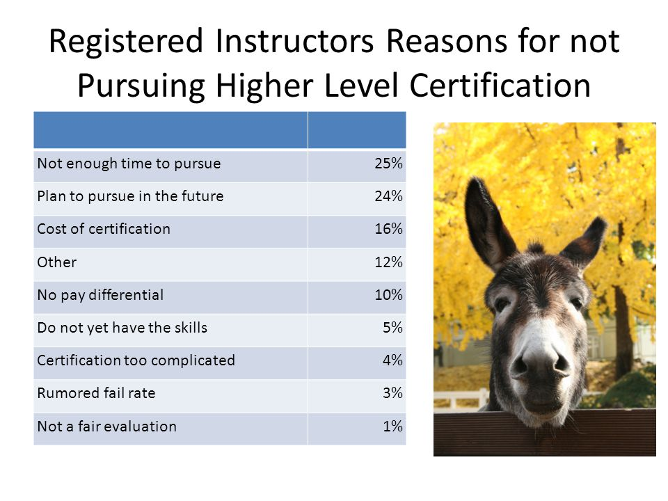 Registered Instructors Reasons for not Pursuing Higher Level Certification Not enough time to pursue25% Plan to pursue in the future24% Cost of certification16% Other12% No pay differential10% Do not yet have the skills5% Certification too complicated4% Rumored fail rate3% Not a fair evaluation1%