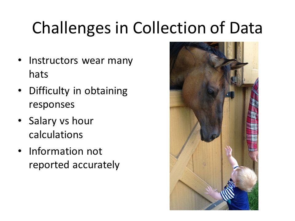 Challenges in Collection of Data Instructors wear many hats Difficulty in obtaining responses Salary vs hour calculations Information not reported accurately