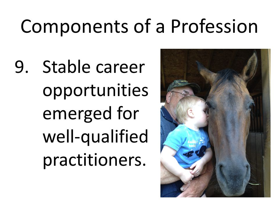 Components of a Profession 9. Stable career opportunities emerged for well-qualified practitioners.