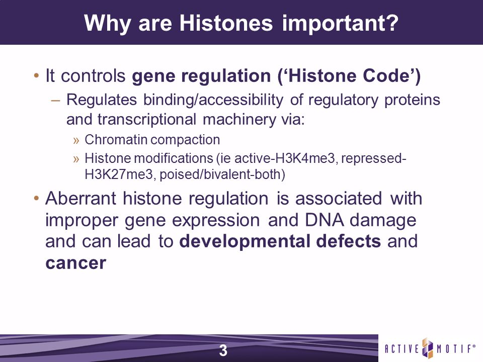 Why are Histones important.