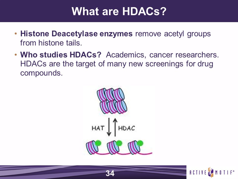 What are HDACs. Histone Deacetylase enzymes remove acetyl groups from histone tails.