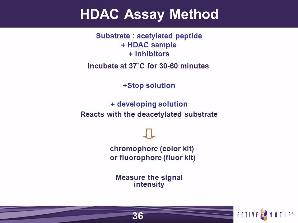 HDAC Assay Method + developing solution Reacts with the deacetylated substrate Substrate : acetylated peptide + HDAC sample + inhibitors Incubate at 37˚C for 30-60 minutes +Stop solution chromophore (color kit) or fluorophore (fluor kit) Measure the signal intensity 36
